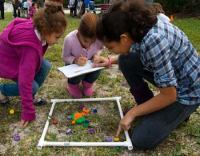 Family Fun Fest Biscayne National Park