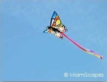 Haulover Kite Festival Miami