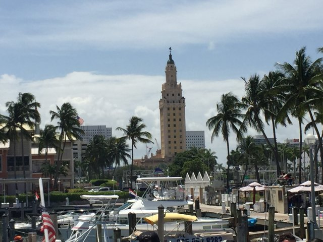 Bayside Marina Freedom Tower Views