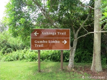 Anhinga and Gumbo Limbo Trails