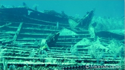 The Benwood Wreck is one of Key Largos top scuba diving spots