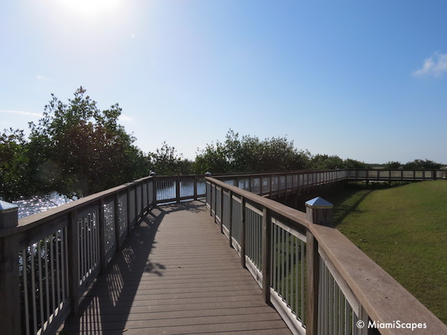 The viewing platform at   Big Cypress Welcome Center