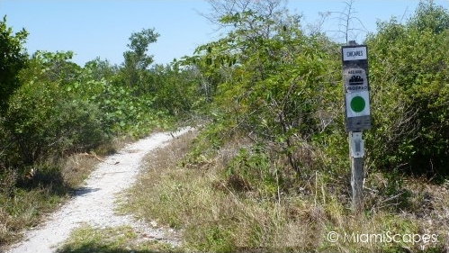 Biking Trails at Oleta