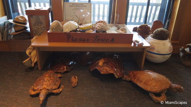 Coral Reef Exhibits at Biscayne National Park Visitor Center