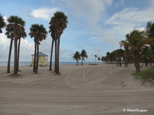 Beach at Crandon Park Key Biscayne