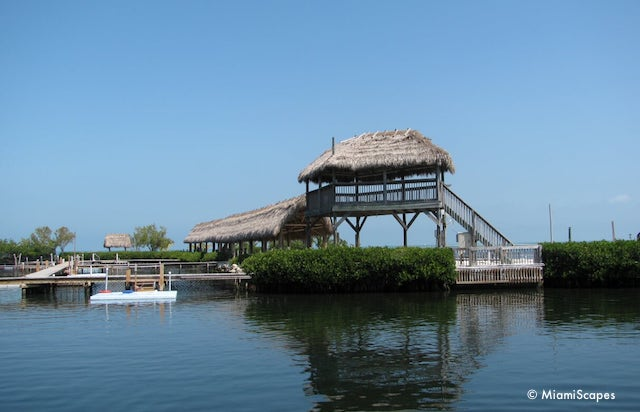 Docks and platforms at the Dolphin Research Center