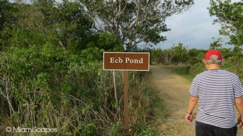 Eco Pond Road Sign