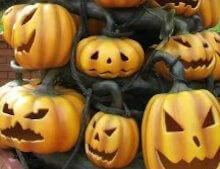 Miami Halloween Pumpkins