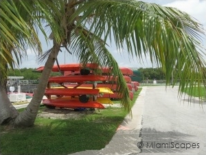 Canoe and Kayak Rentals at Flamingo
