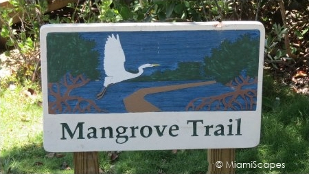 Mangrove Trail Sign