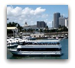 Miami Attractions: Biscayne Bay