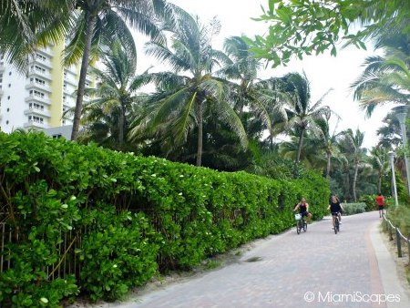 Biking on the Miami Beachwalk