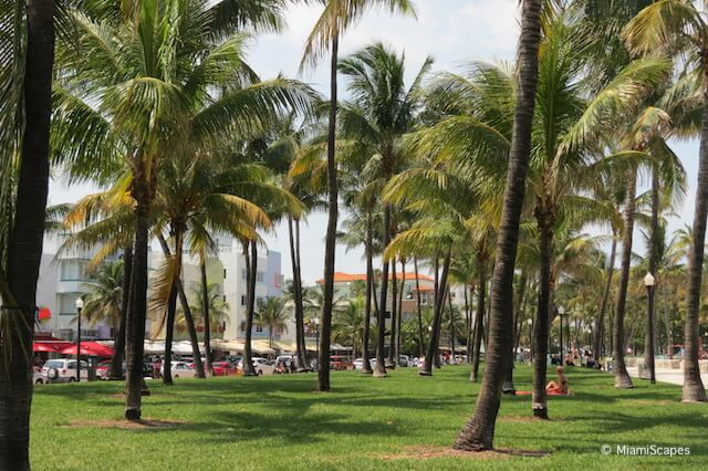 BOcean Drive and the beach at Lummus Park