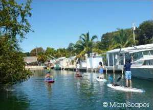 Paddle Boarding in Islamorada