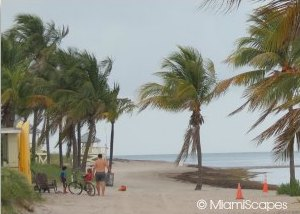 Miami Family-Friendly Beaches: Crandon Park