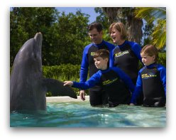 Miami Seaquarium Mothers Day with Dolphins