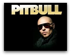 Pitbull New Years Eve in Miami