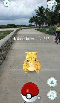 Ground type Pokemon Sandshrew on the Paved Promenade in South Beach