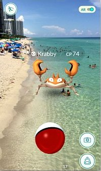 Catching Krabby at the Sunny Isles Beach in Miami