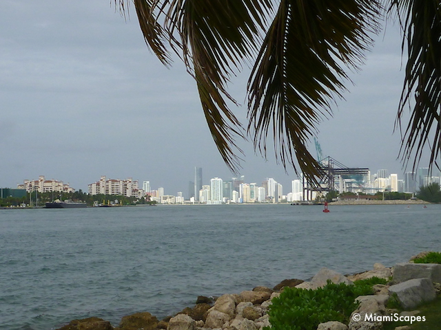 View of downtown Miami from South Pointe Park