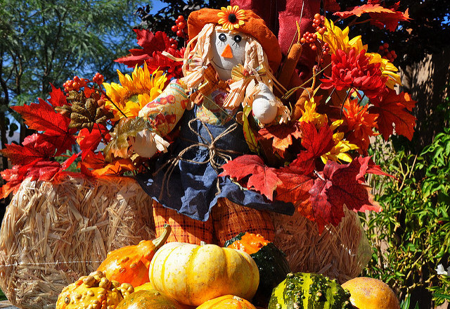 Thanksgiving and Autumn Decorations