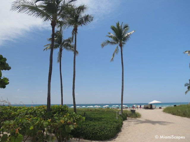 Bal Harbour Beach Walk