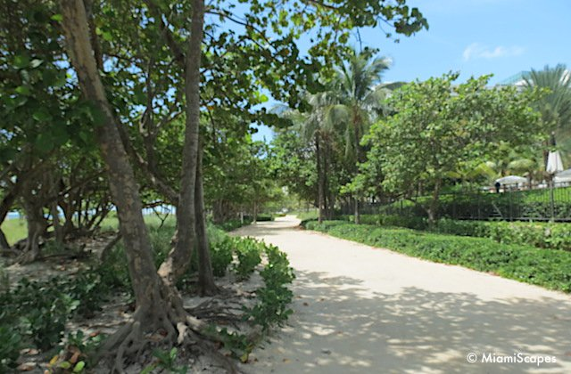 Bal Harbour Beach Walking Paths