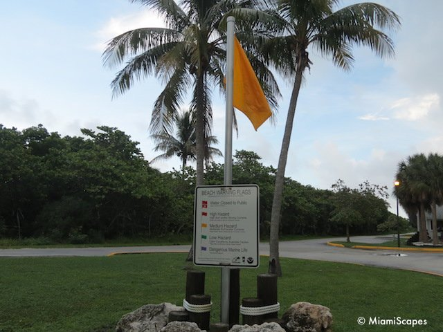 Beach Warning Flag at Bill Baggs