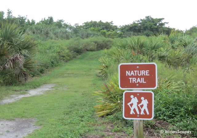 Bill Baggs Nature Trails