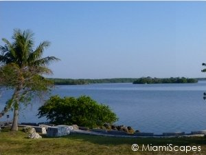 Views of the Bay at Biscayne National Park