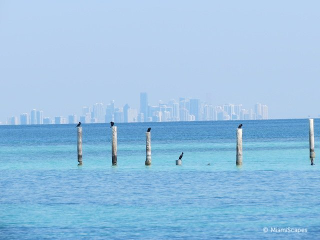 Views of Miami Skyline at Boca Chita Key