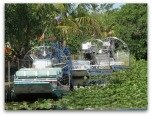 Florida Everglades Tours