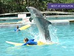 Miami Seaquarium Discount Ticket