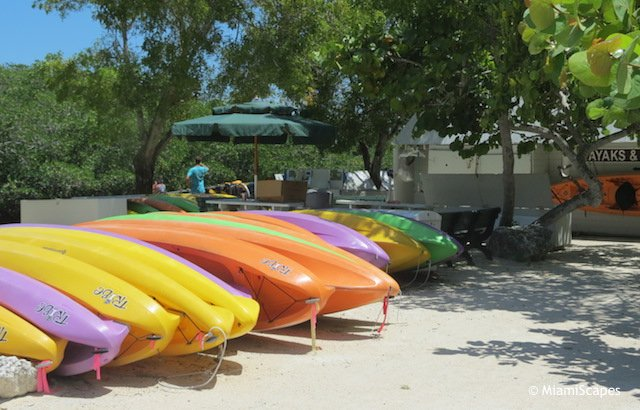 Kayak and canoe rentals  at John Pennekamp