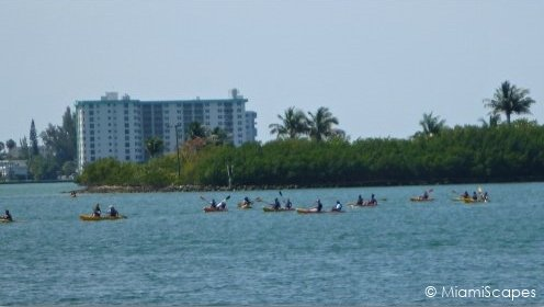 Kayaking at Oleta out on the bay