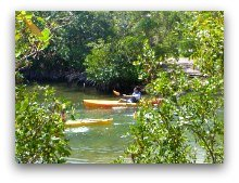 Kayaking Oleta River