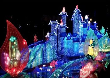 Colorful lanterns adorn the Miami Lantern Light Festival