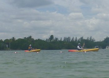Miami Beaches Kayak