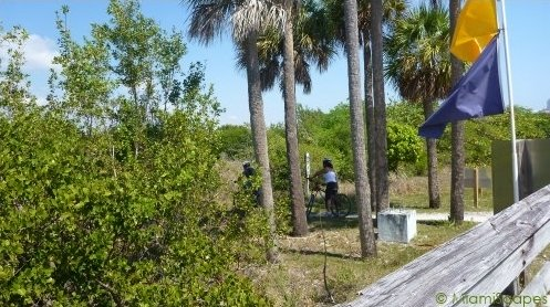 Oleta biking trails