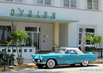 The Avalon on Ocean Drive South Beach