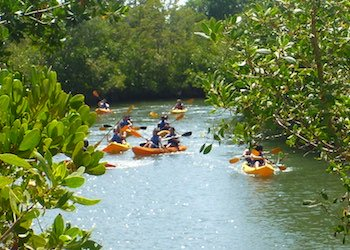 Kayaking at Oleta River State Park