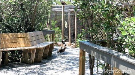 Walk and Bird Cages at the Sanctuary