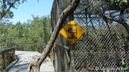 Pelican Crossing Sign at the Sanctuary