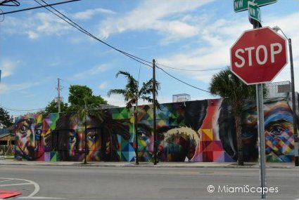 Wynwood Art District Street Art Miami